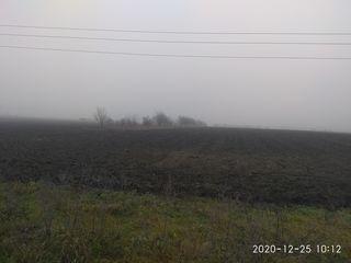 In pret este inclus 1ha30sote de pamint arabil, unde sunt 42 nuci+vie+gradina. Lotul se afla la 1km