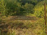 Срочно!! Земельный участок с маленьким домиком. 4 км от Чекан окола леса. 14800€