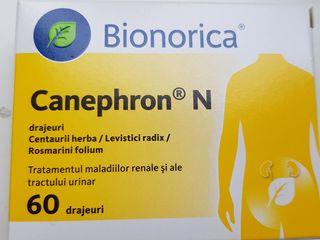 Conephron