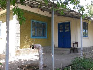 Украинское Село-Bălţata 20 км от Кишинева
