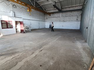 Chirie - depozit / producere  - suprafete de la 100 m2 - 700 m2 ! Locatie perfecta !