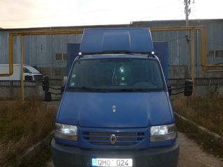Renault masscot