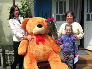 Livrăm surprize în Chisinau si în toată Moldova. Trandafiri / ursuleti de plus / baloane