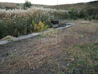 Vânzare teren agricol cu suprafața de 12 ari, satul Boșcana, Criuleni