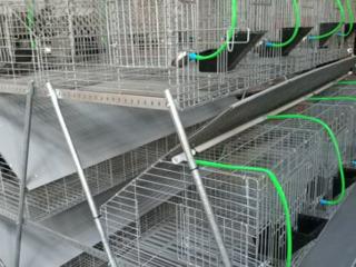 Cusca Iepuri 50 model în credit la 0% pentru reduceri tel076730583 Tehno-Ms.md