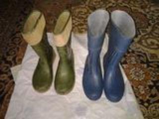 Резиновые сапоги 42 размер  цена 100-150 лей