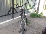 bicicleta sport Olympia