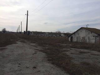 Complex imobiliar orasul Drochia, Fermă.