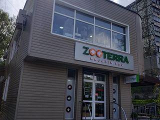 Зоомагазины Zooterra - огромный выбор товаров для ваших питомцев !