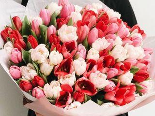 Reducere 25%. Flori proaspete și Buchete de flori cu livrarea. 8 Martie