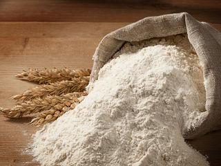 Faina de grau , мука пшеничная