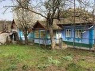 Продается дом в с.Дойбаны 1 р.Дубоссары, виноградник на окраине села колодец во дворе, торг.