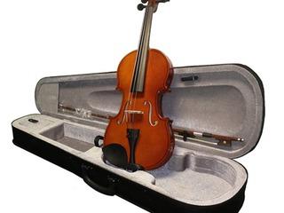Vioare+accesuare / скрипки + аксессуары и комплектующие