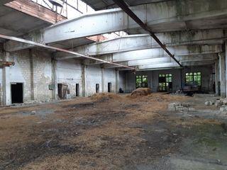Vinzare spatiu industrial str.Eliberarii