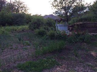 Продается дом в селе Бошкана / Se vinde casa in satul Boscana