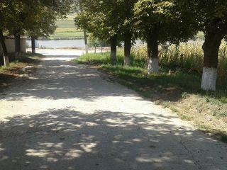 Vindem lot 30 ari la doar 25 km de chisinau, drum asfaltat si toate comunicatile