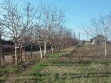 продоётся дом село яблона