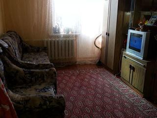 большая одно комнатная квартира
