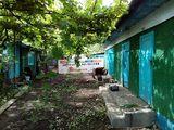 Se vinde casa in satul Ciuciulea.