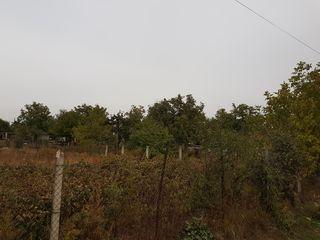 Teren pentru constructii 5 ari (sat. Băcioi)