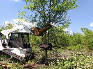 Oferim servicii de defrișare a terenurilor agricole. Предлагаем услуги по уборке или расчистке.