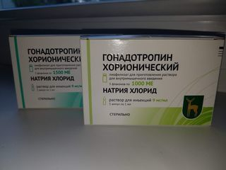Гонадотропин хорионический (Gonadotropin)