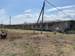 Ferma/depozit (teren agricol +teren sub construcție )