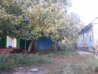 Se vinde casă în s.Pârlița r. Fălești
