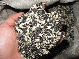 Vindem coaja = Продаем шелуха скорлупа подсолнуха