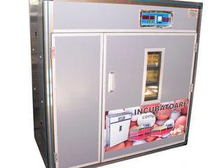 Incubator MS-1056 Automat/Livrare gratuita/Garantie 12 luni/Credit /20000 lei