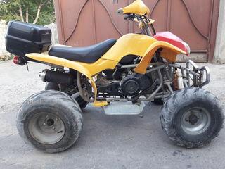 Alte mărci ATV