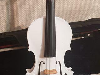 Скрипка 1/2 , 2/4.