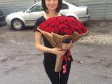101 trandafiri moldovenesti!