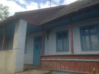 satul Molovata, raionul Dubăsari, Casă de locuit, teren 15,5 ari. 100 m de la rîul Nistru.