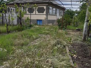 Se vinde casă in s.Ţipala, r- ul Ialoveni