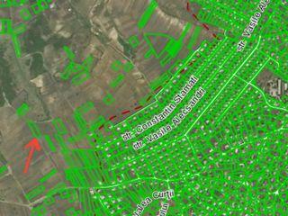Vând 19 ari de teren (gradină) la marginea satului Costești, r.Ialoveni