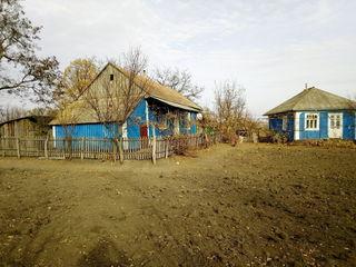 Продается дом в селе Баронча