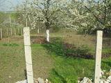продаётся земельный участок в селе Кашерница