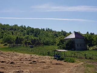 Se vinde casa cu 18 hectare de pamint agricol