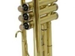 Trompeta Flame Pro JYTR-1401. Livrare în toată Moldova. Plata la primire