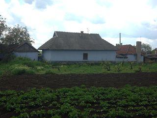 продам дом в с. малаешты григорьопольский район,дом находится в центре села..