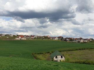 Cruzeşti 4 hectare - arabil cu perspectivă