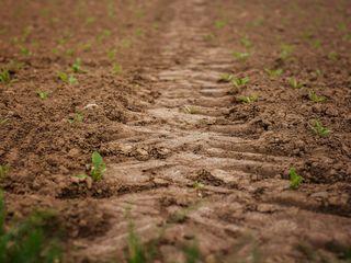 Teren Agricol 3,75ha