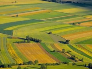 Vand teren agricol 2 cote s. Popesti