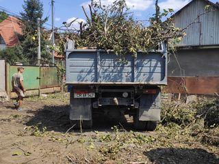Вынос мусора и вывоз
