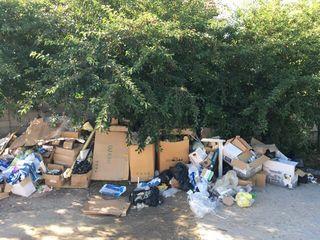 Evacuarea tuturor deșeurilor posibile în termeni record! Вывоз всех видов мусора в кратчайшие сроки!