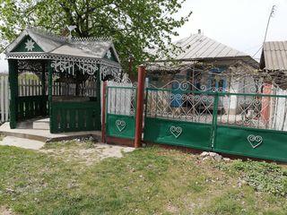 Продам, дом зимний и дом летний в селе
