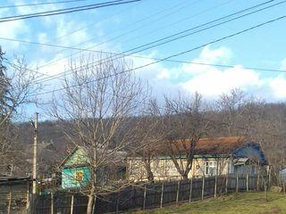 Vand casă în Căpriana