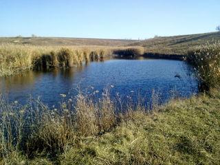 Сдам два озера в аренду на 25 лет.Цена за два озера 5000 лей в год(3000 лей в год, сразу за 25 лет).