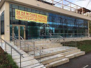Chirie, spațiu comercial, Botanica, 30-125 mp, 20 €/mp